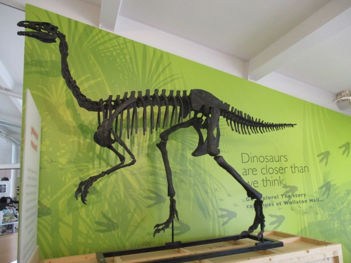 The Rochester Museum And Science Center Or Rmsc Is A In New Yorkexhibition Displayexhibit Designdinosaur